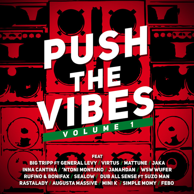 PUSH THE VIBES